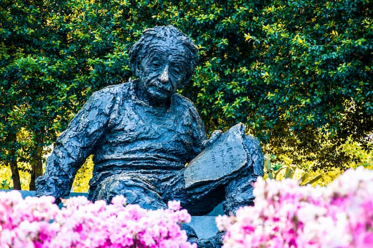 Statue of Albert Einstein surrounded by flowers