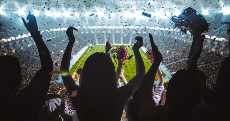 sports fans stand and cheer during a game inside an enclosed arena
