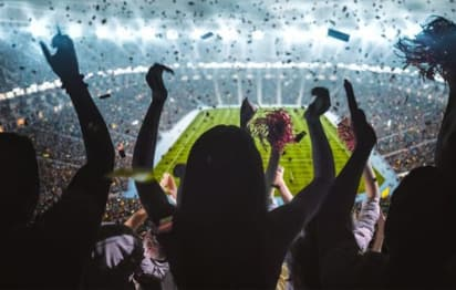 fans stand and cheer in an enclosed arena during a game