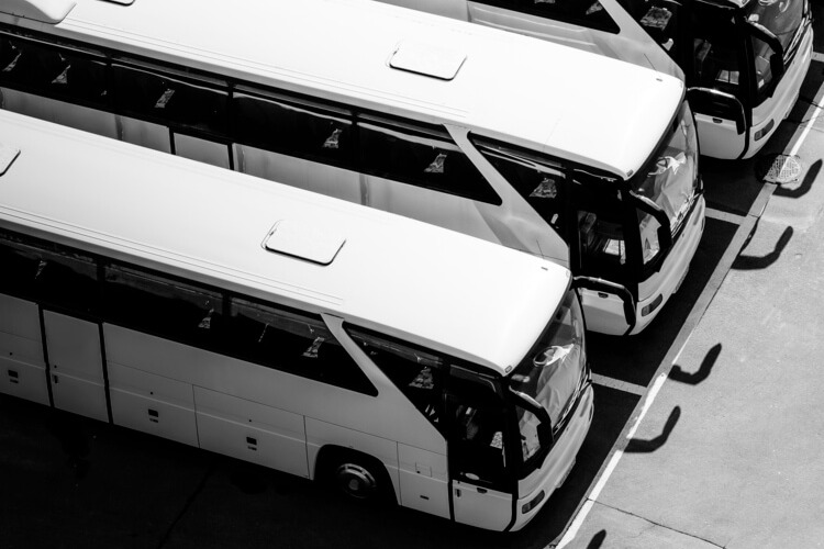 a lineup of charter bus rentals in a parking lot